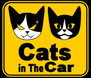 Cats_in_the_car